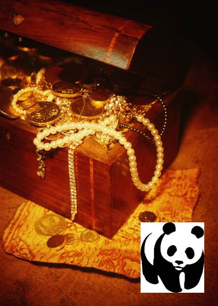bling panda